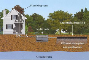Elitte Septic Tank - septic system